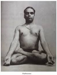 What Is Yoga What Is Iyengar Yoga Life And Practice